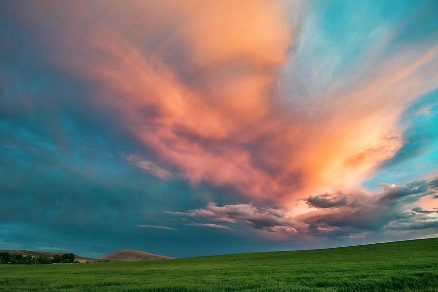 Sunset Field by Harold Carlson