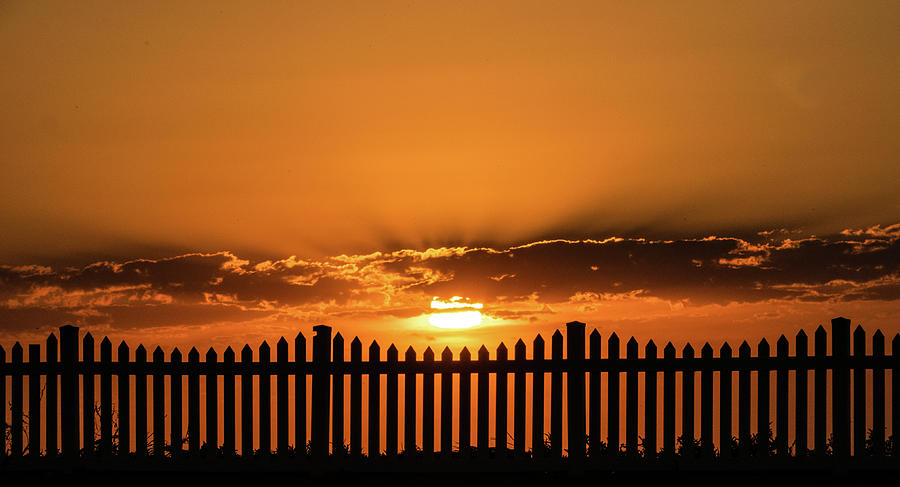 Sunset Photograph - Sunset from the front fence by Leigh Henningham