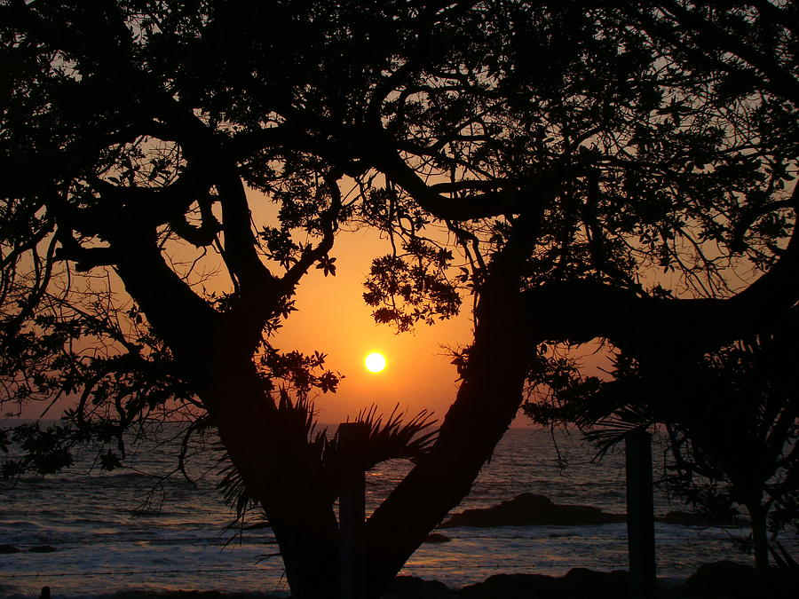 Sunset in Nicaragua by Silvia Marcoschamer