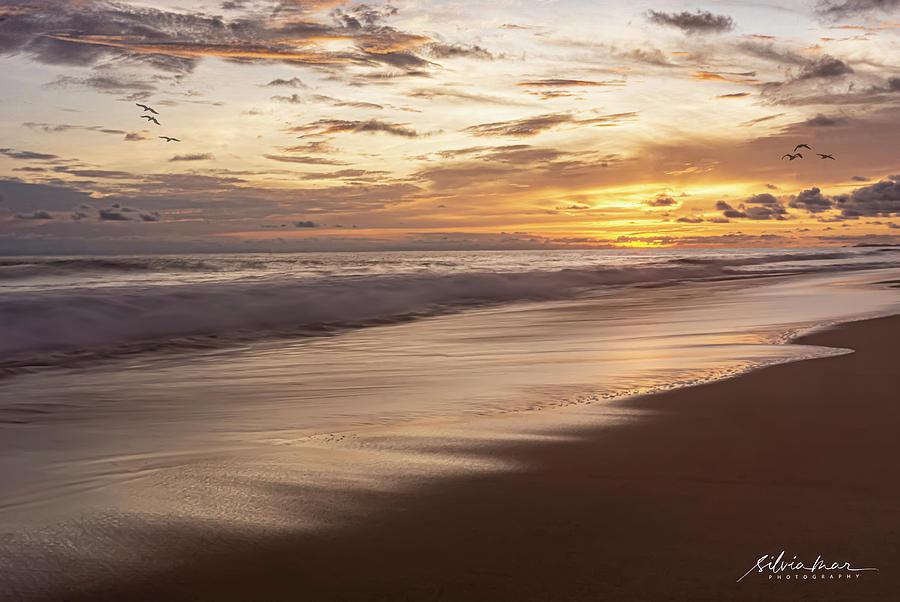 Sunset in Oaxaca. by Silvia Marcoschamer