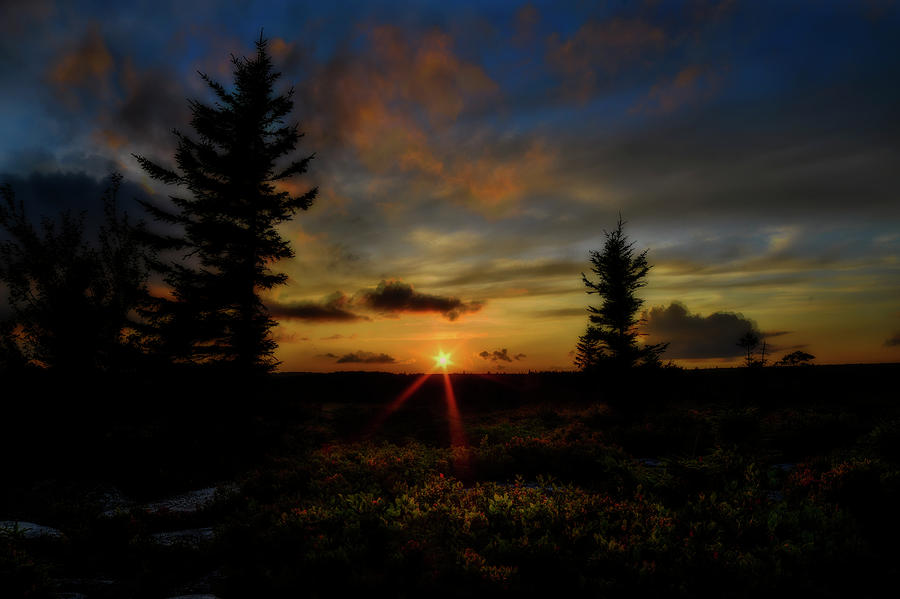 Sunset on Dolly Sods streaming light by Dan Friend