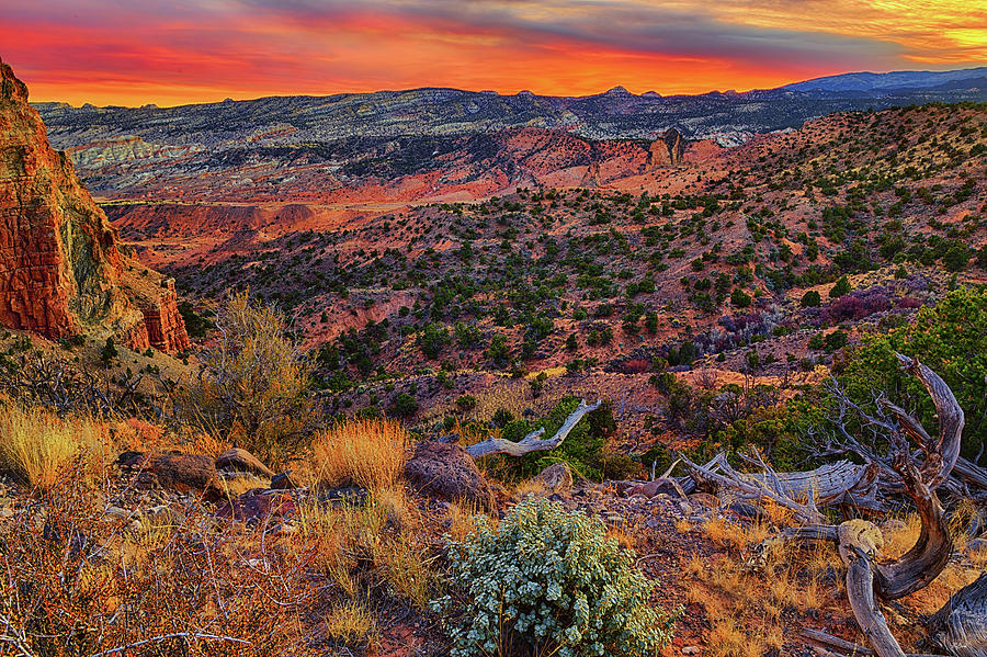 Sunset on the South Desert by Greg Norrell
