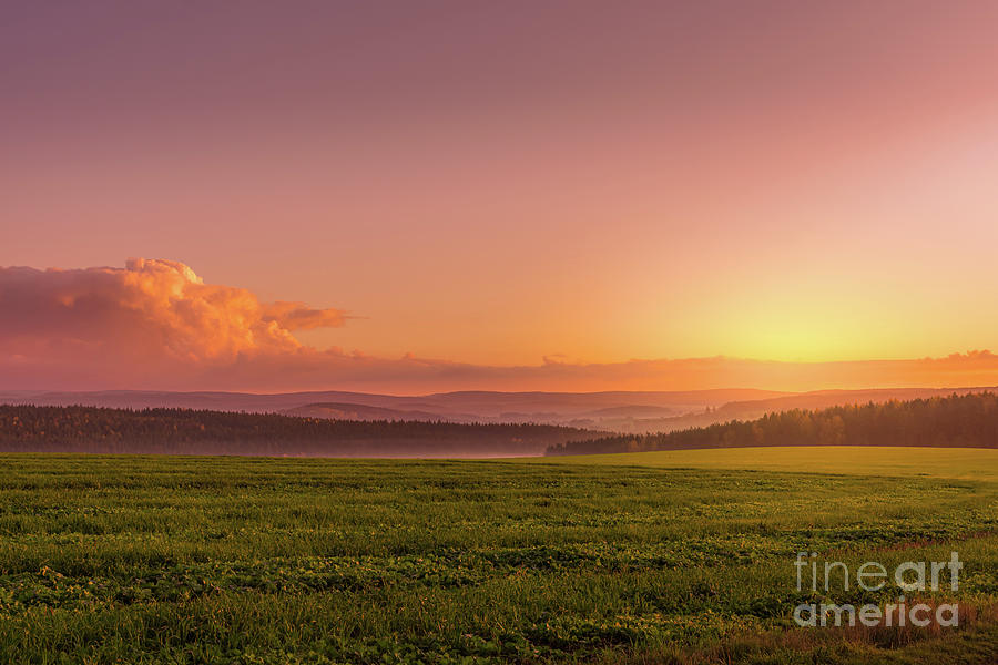 Sunset Over A Forest Landscape Photograph