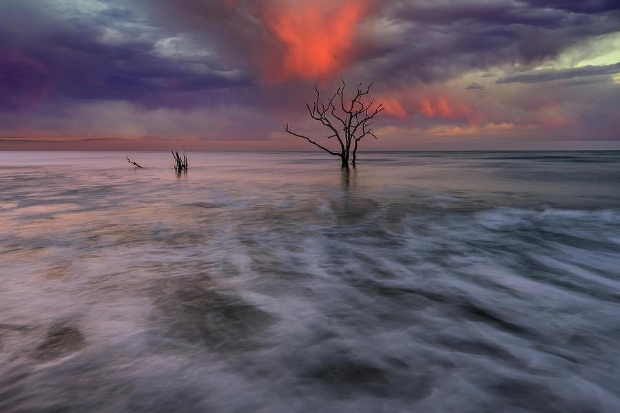 Sunset Over Botany Bay by Jon Glaser