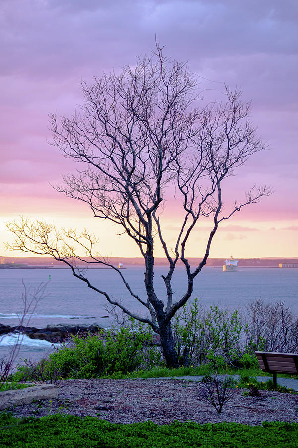 Sunset Over Sopo Photograph