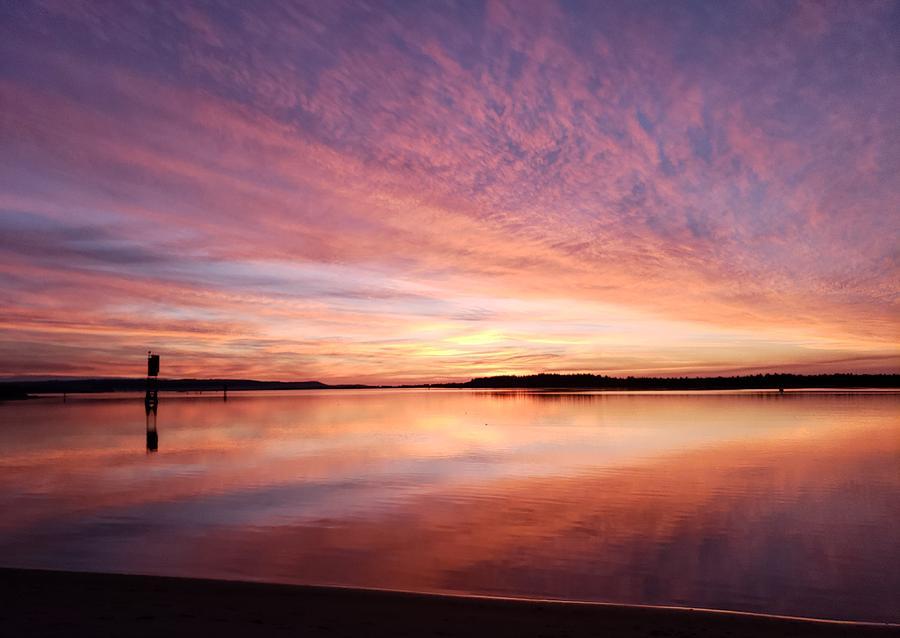 Sunset Shouts by Suzy Piatt