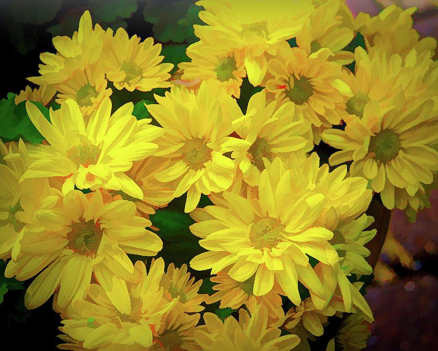Sunshine In Flowers Digital Art