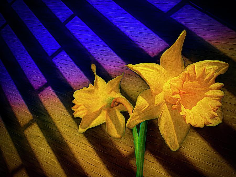 Sunshine by Paul Wear