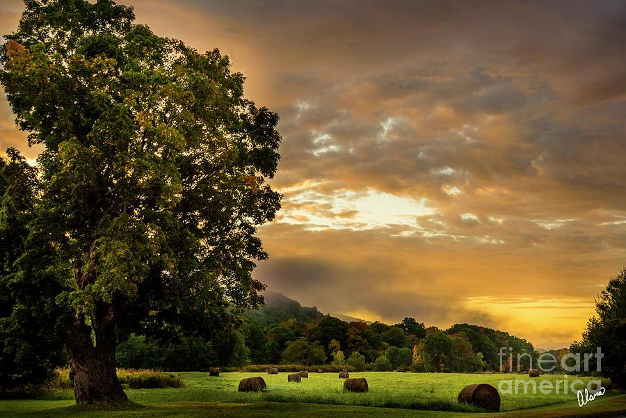 Sunup At The Farm Photograph