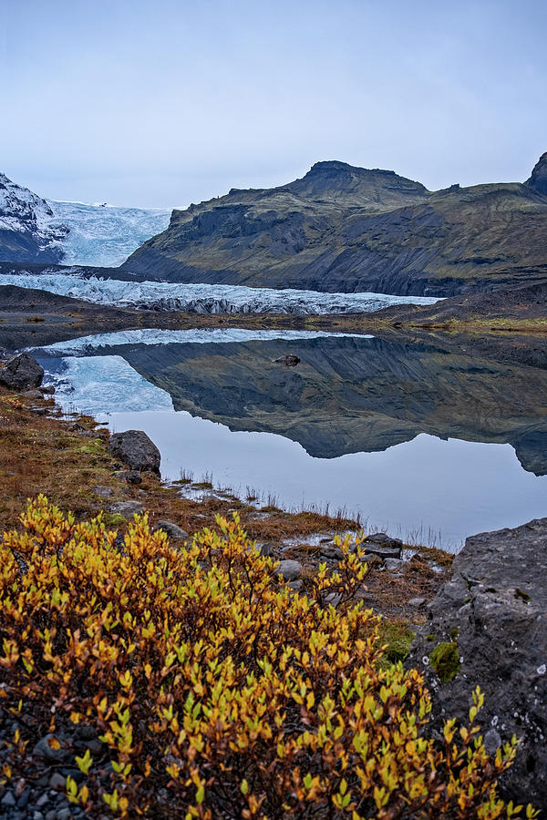 Svinafellsjokull View by Catherine Reading