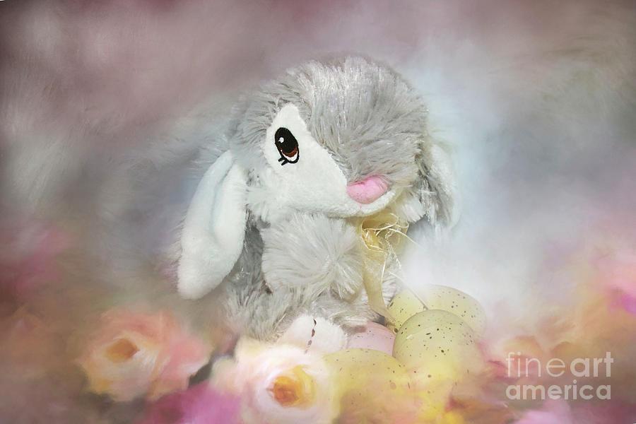 Sweet Bunny Photograph