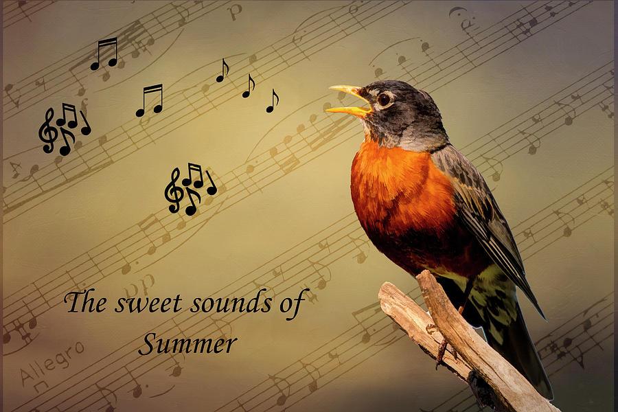 Sweet Sounds Of Summer Photograph