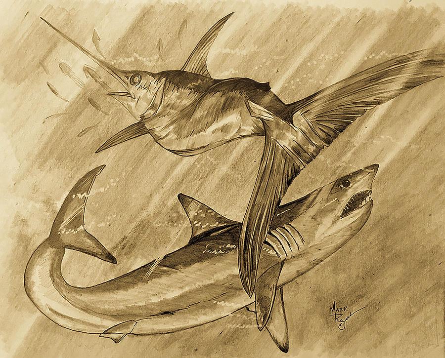 SWORDFISH AND MAKO SHARK by Mark Ray