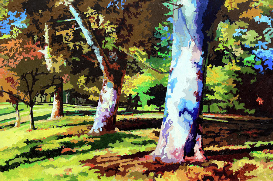 Sycamore Trees Painting - Sycamores in Forest Park by John Lautermilch