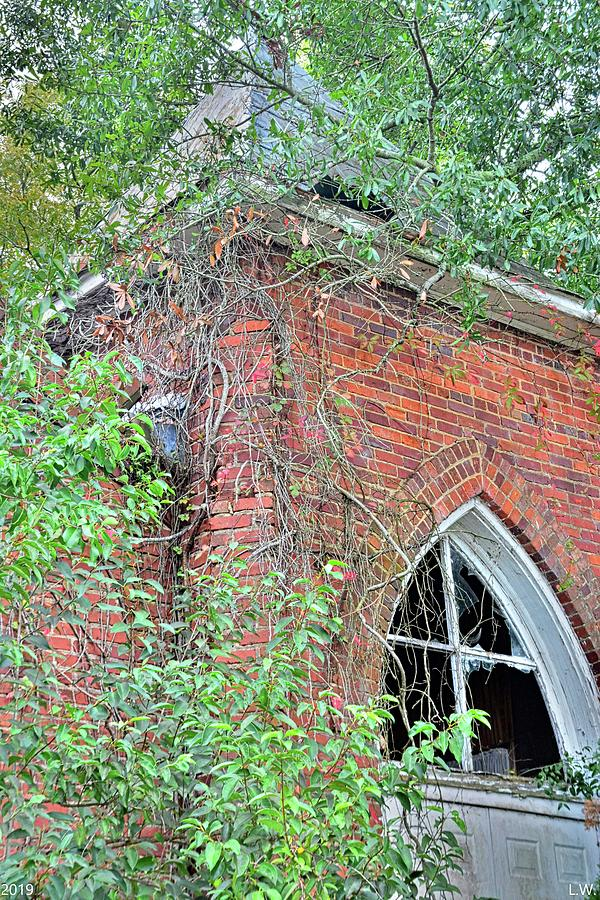 Tabernacle Baptist Church Ruins Blackville Sc 2 by Lisa Wooten