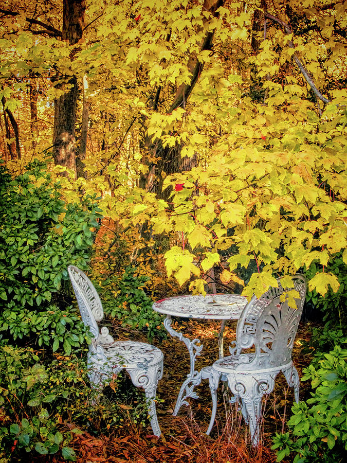 Table For Two In Autumn Photograph