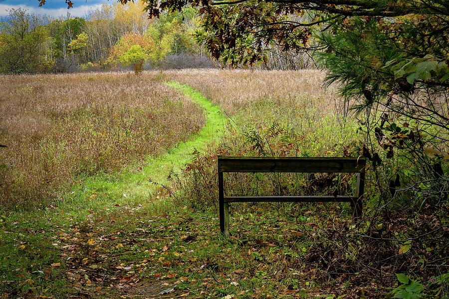 Take a walk by David Heilman