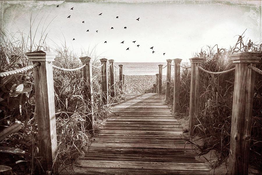 Take a Walk in Vintage Sepia by Debra and Dave Vanderlaan