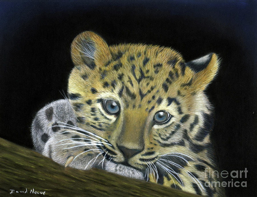 Taking A Break Pastel - Taking A Break Lion Cub Pastel Painting by Dave Nevue