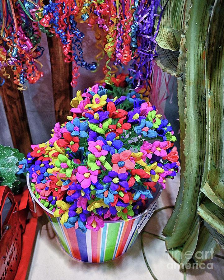 Taste Of San Antonio Color Photograph