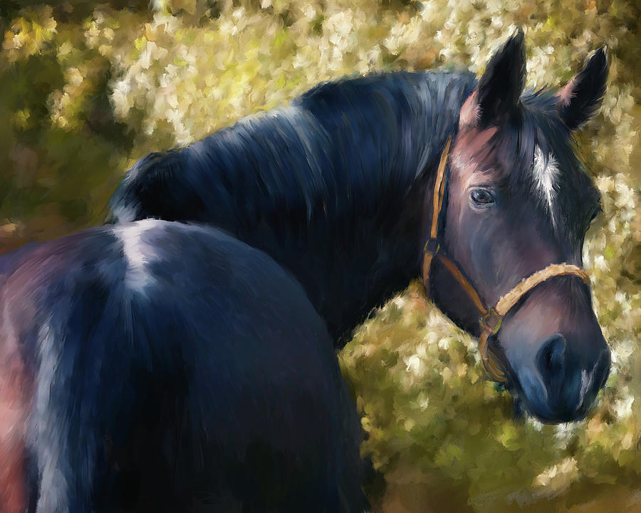 Tennessee Walker Horse Portrait by Portraits By NC