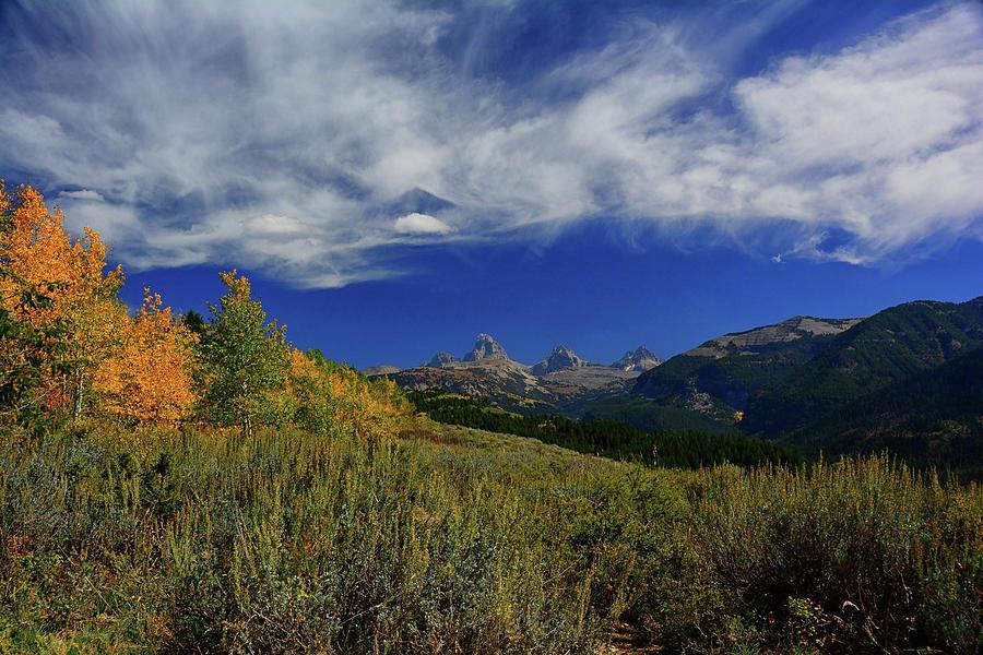 Teton Canyon Cobalt Blue by Raymond Salani III