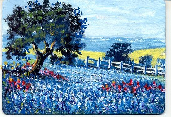 Aceo Painting - Texas Hill Country Bluebonnets #2 by Peggy Conyers