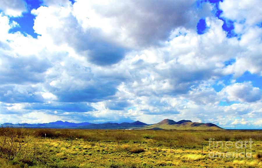 Texas landscape by Mae Wertz