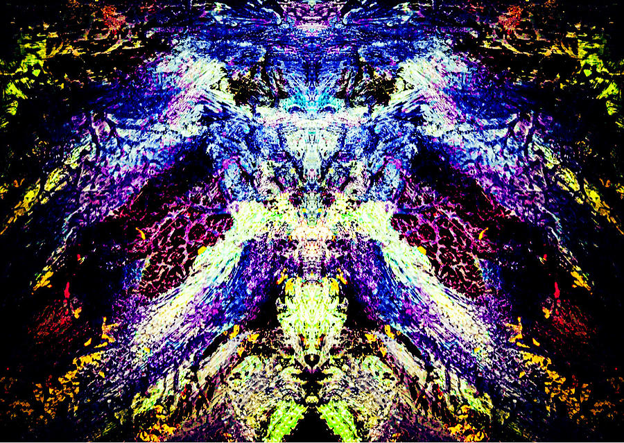 Textured101 Photograph