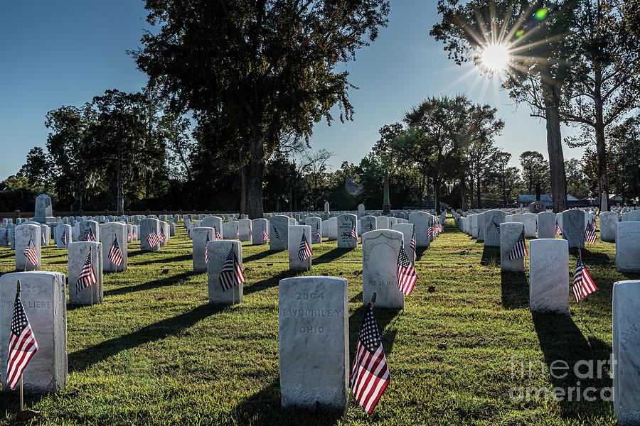 Veteran Photograph - Thank a Veteran by Steven Norris