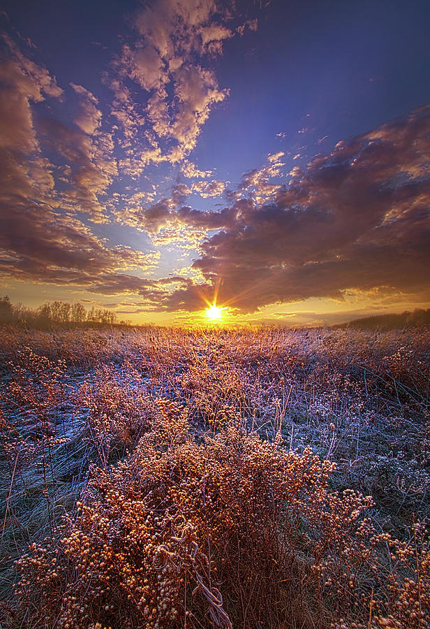 Thankful Every Day by Phil Koch