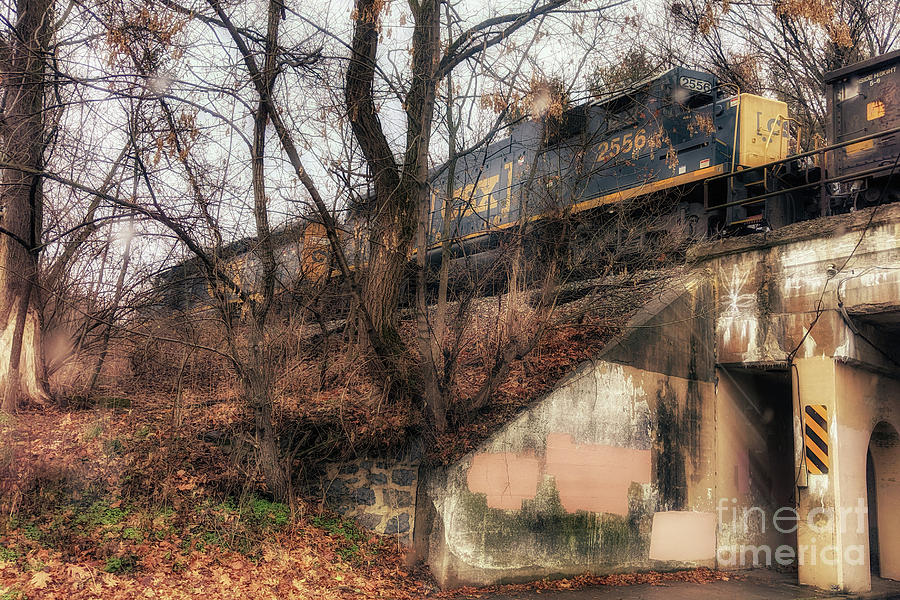 Trains Photograph - The 2556 by Steven Digman