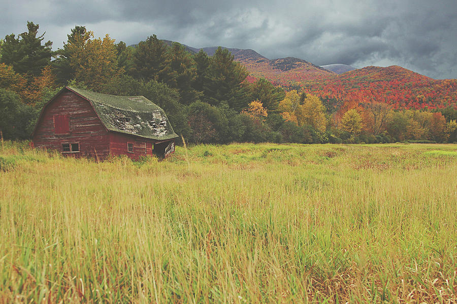 Fall Photograph - The Barn by Carrie Ann Grippo-Pike