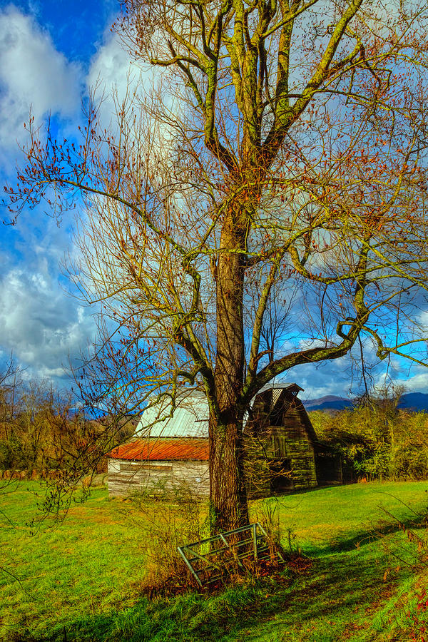 The Barn Farm Gate by Debra and Dave Vanderlaan
