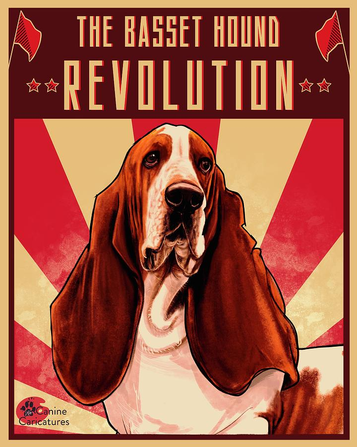 The Basset Hound Revolution Drawing