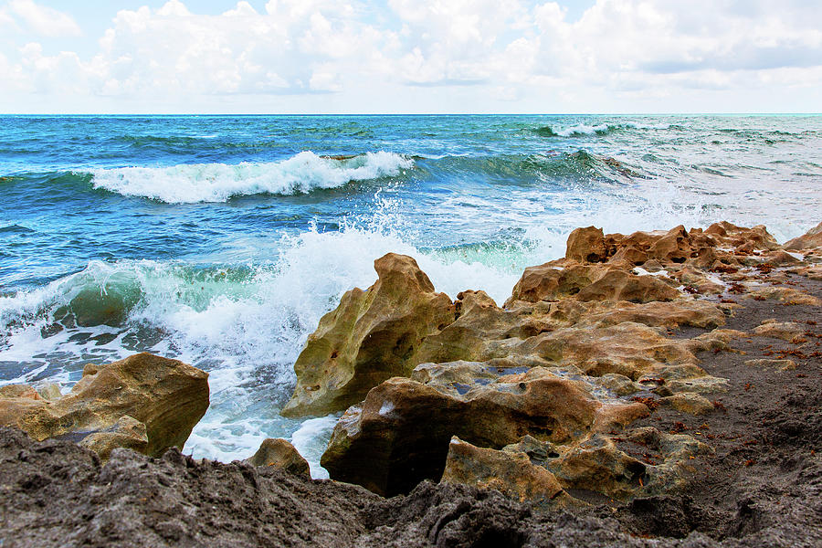 The Beach At Blowing Rocks Preserve Photograph