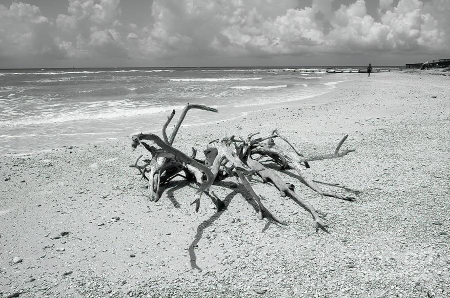 The Beach Photograph - The Beach by Felix Lai
