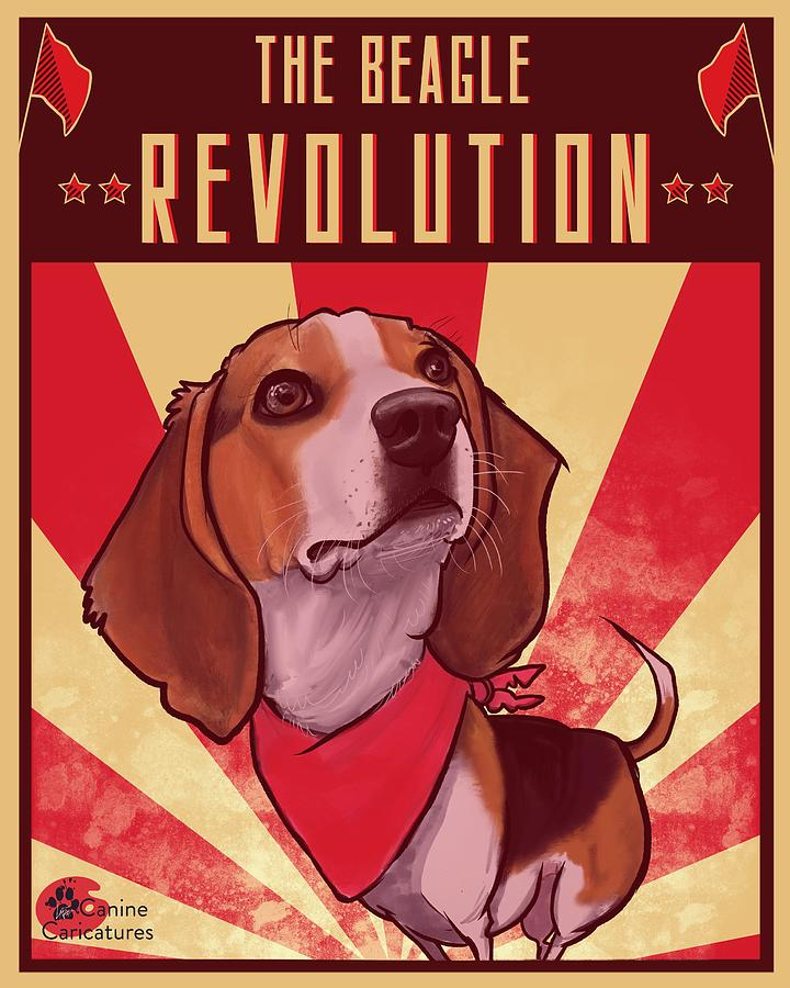 The Beagle Revolution Drawing