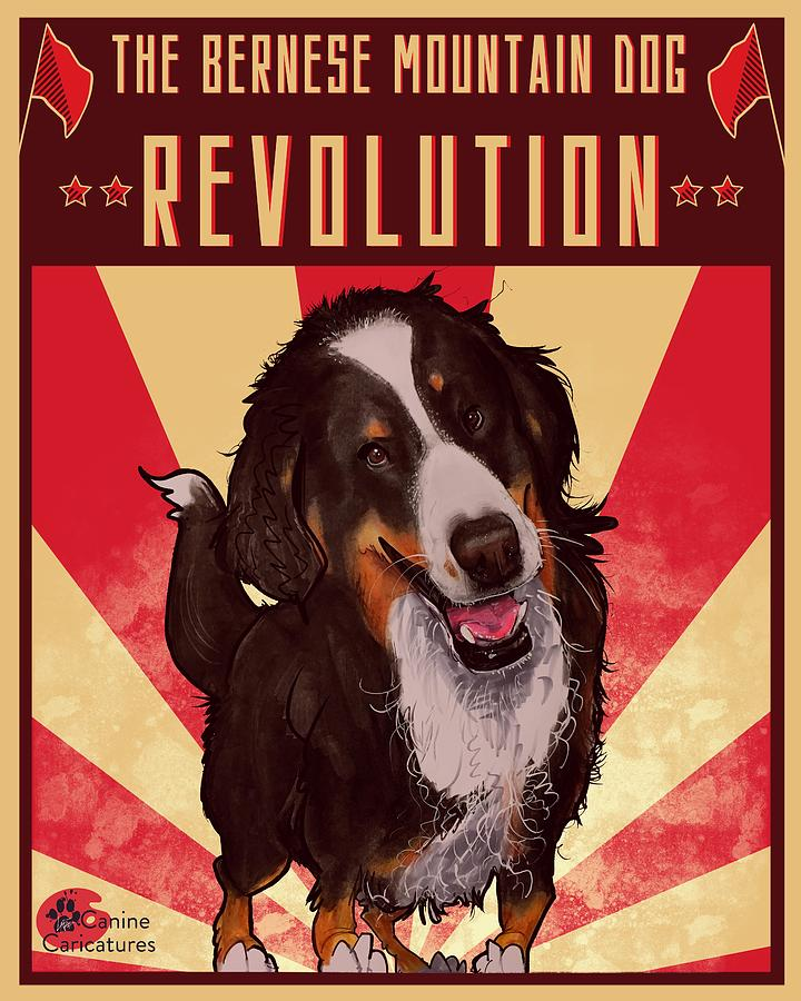 The Bernese Mountain Dog Revolution Drawing