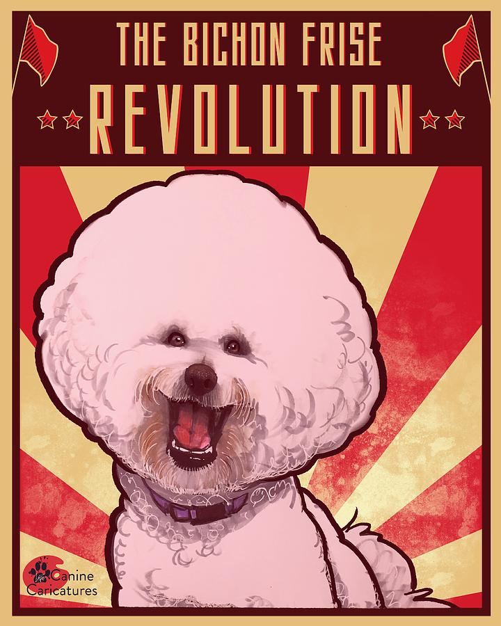 The Bichon Frise Revolution Drawing