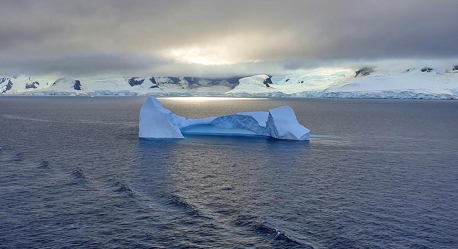 The Big Iceberg Photograph By Andrea Whitaker