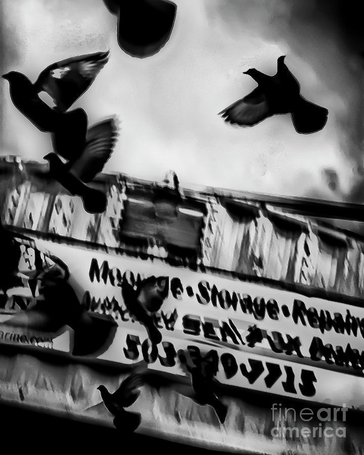 Black And White Photograph - The Birds - Garibaldi - Oregon by Artistic Oregon Photo