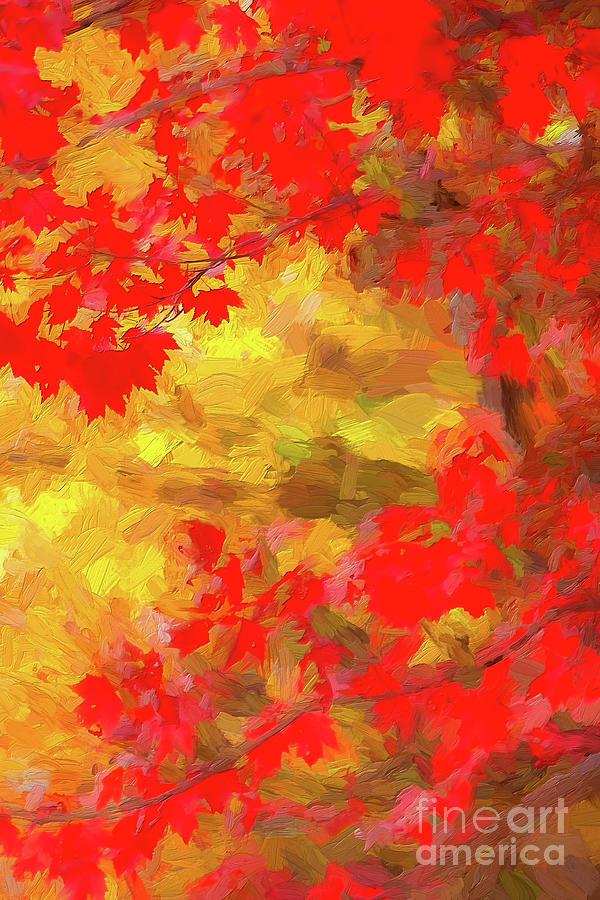 The Brilliant Reds of Autumn ap by Dan Carmichael