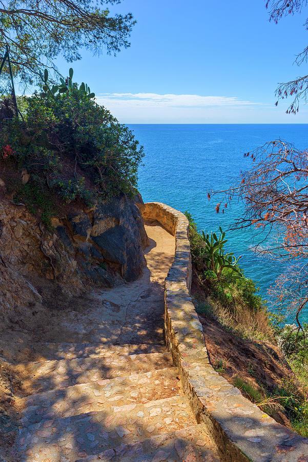 Camino De Ronda Photograph - The Cami De Ronda By Lloret De Mar by Vicen Photography