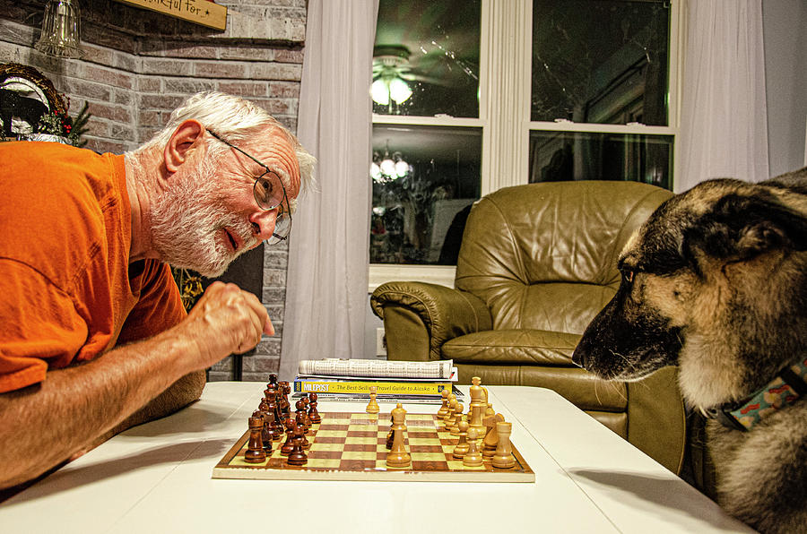 Chess Photograph - The Chess Match by Jim Cook
