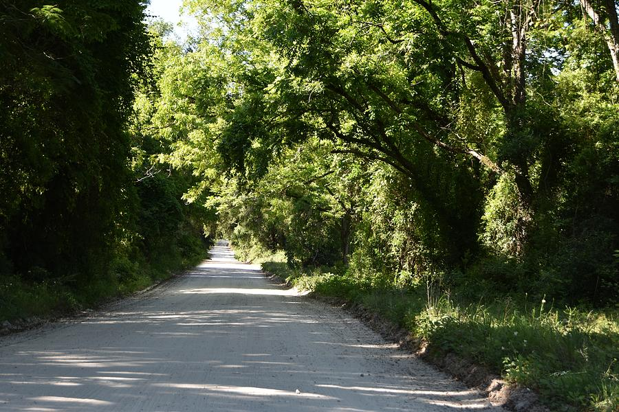 The County Road Photograph