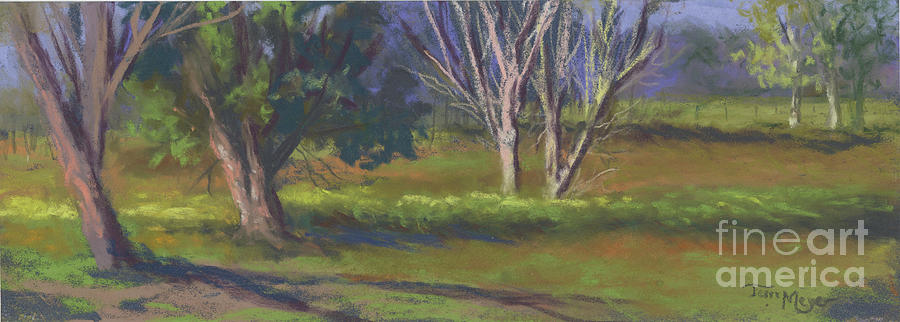 The Dance Of Light With The Trees Painting