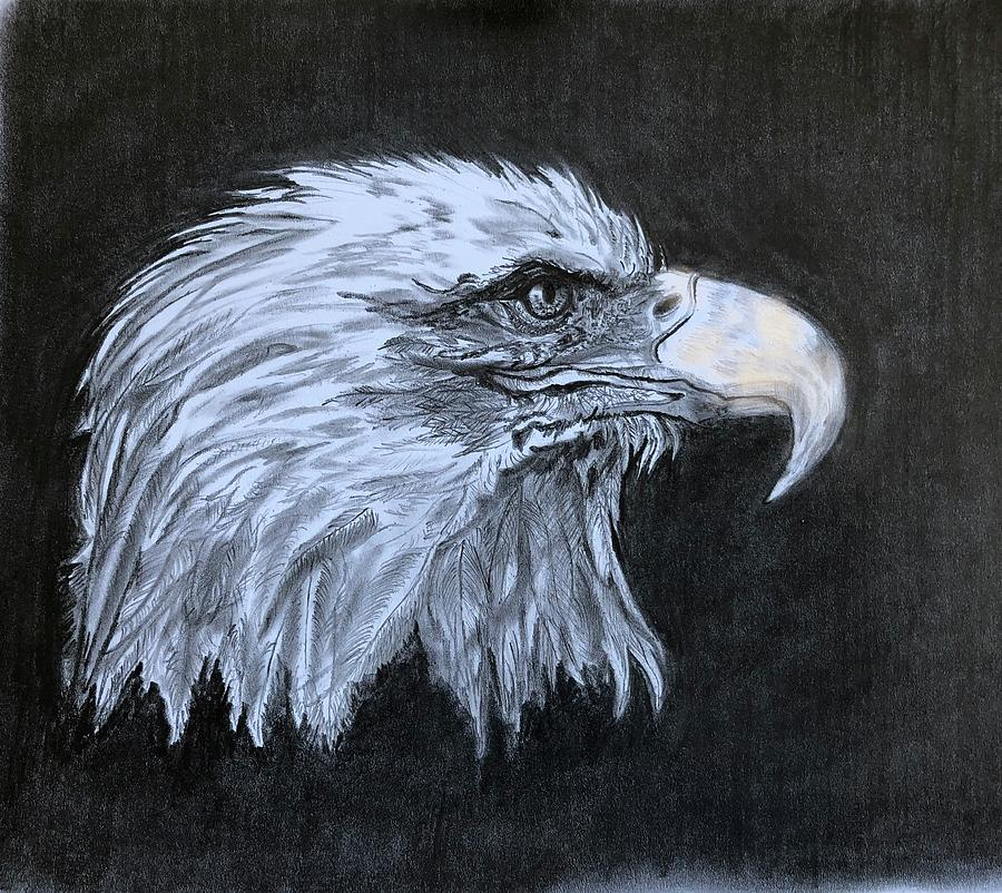 The Eagle Drawing