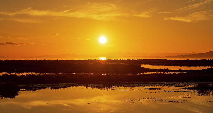 Lake Photograph - The Ebro Delta At Sunset by Vicen Photography