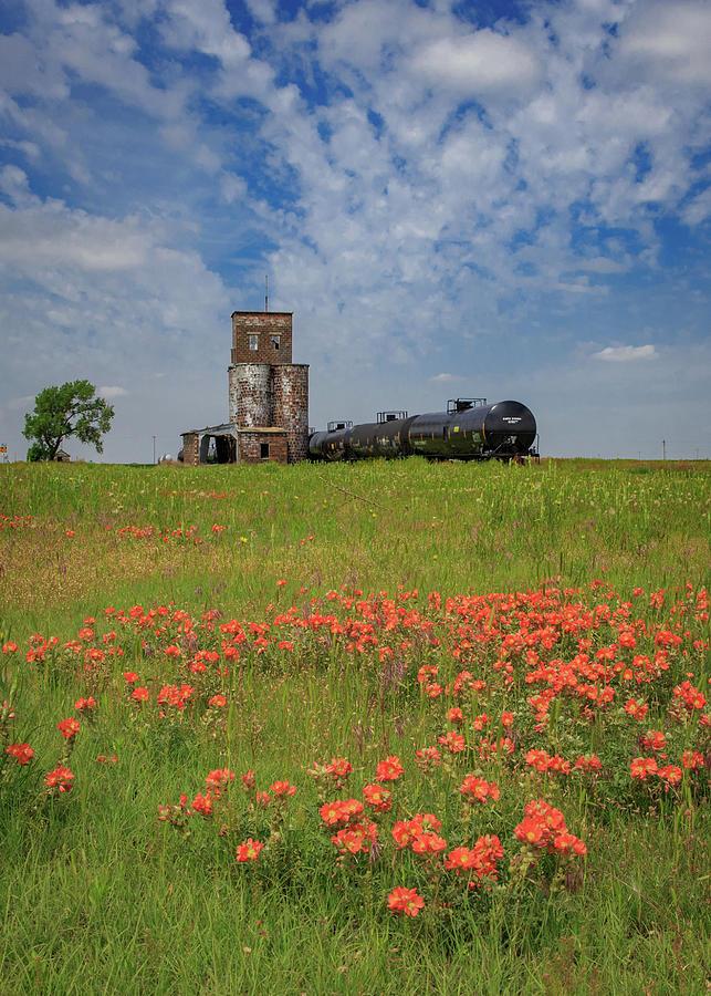 The End Of The Line - Feterita, Kansas Photograph